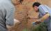 建质[2016]253号《震后房屋建筑安全应急评估管理暂行办法》2016年11月16日